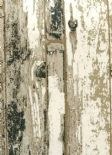 Index Driftwood Bronze Wallpaper 1987/125 By Prestigious Wallcoverings